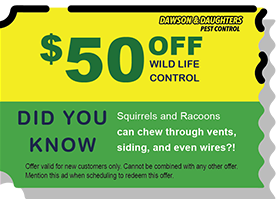 $40 off Wild life control