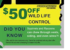 $50 off Wild life control